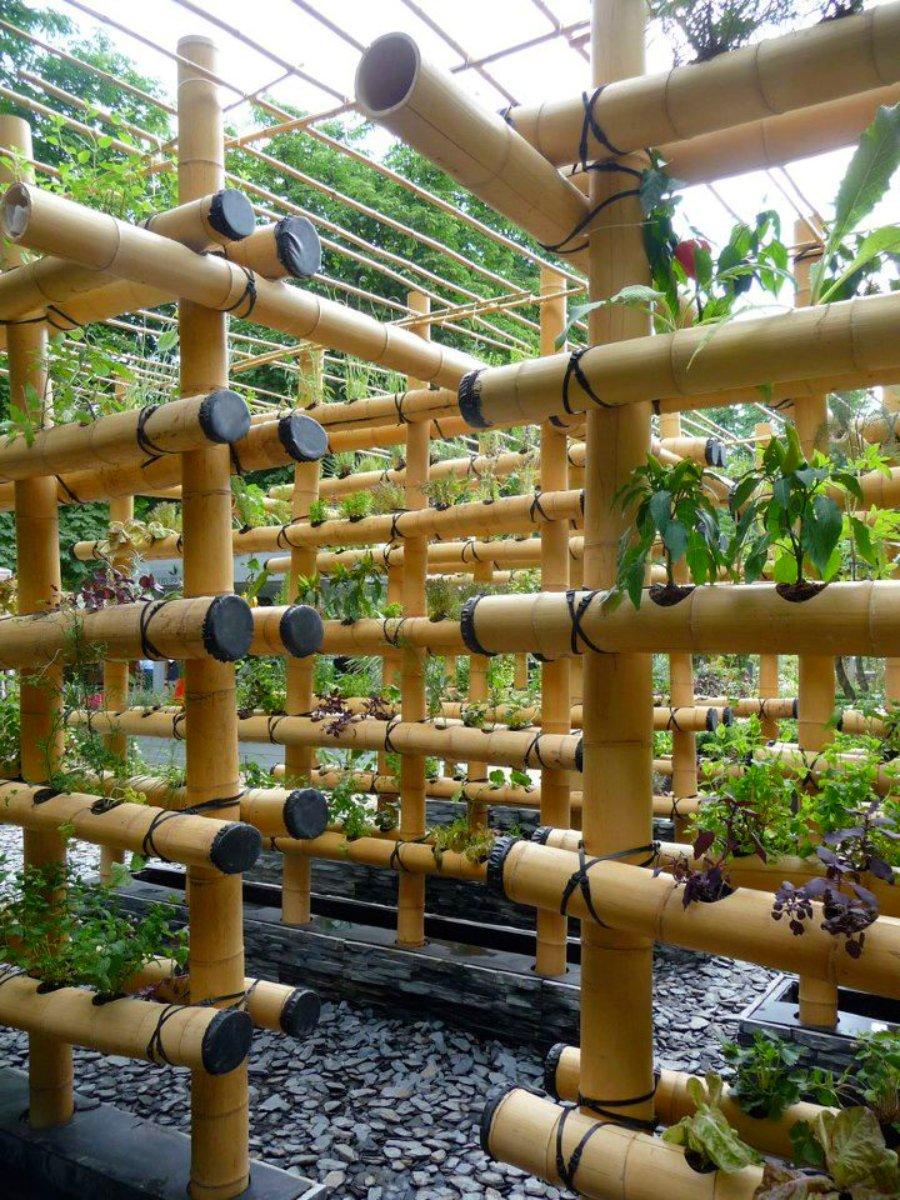 hydroponics_bamboo